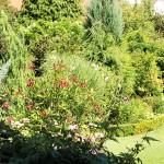 Garten20