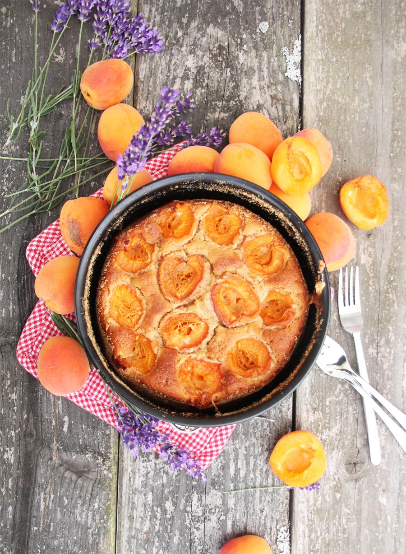 aprikosekuchen