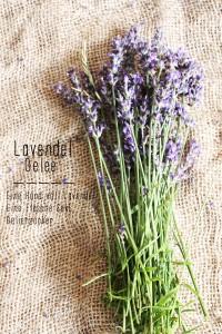 Lavendel Marmelade