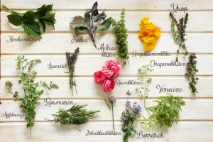 Blüten essbar