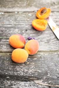 aprikosen kuchen backen